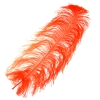 "Ostrich Wing Feathers 18-24"" Premium Quality 1/2 Lb Orange"